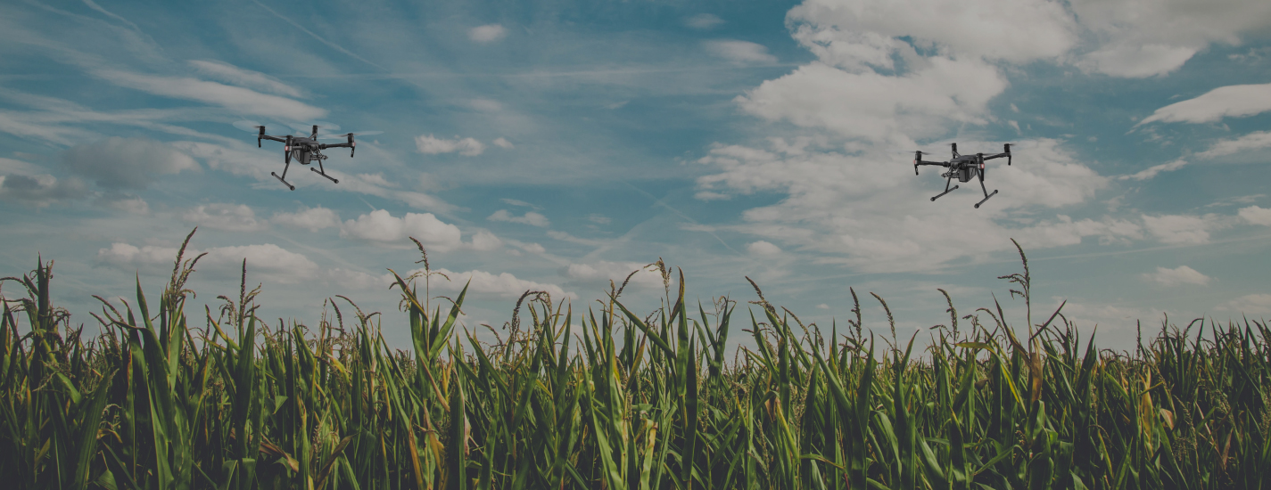 AgriBugs Automates Drone Agriculture Operations and Powers Crop Analysis using AI